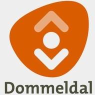Logo van Bibliotheek Dommeldal
