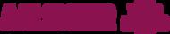 organisatie logo Team Aalsmeervoorelkaar