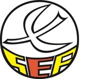 organisatie logo Voetbalvereniging Sport en Plezier