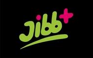 organisatie logo stichting Jibb+