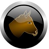 organisatie logo LGGI