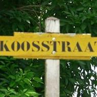 Profielfoto van Koos